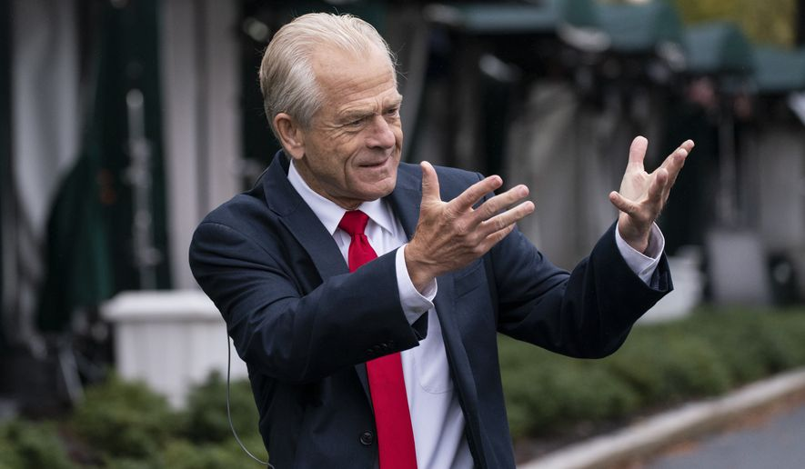 White House trade adviser Peter Navarro gestures while speaking to a reporter at the White House, Monday, Oct. 12, 2020, in Washington. (AP Photo/Alex Brandon) **FILE**