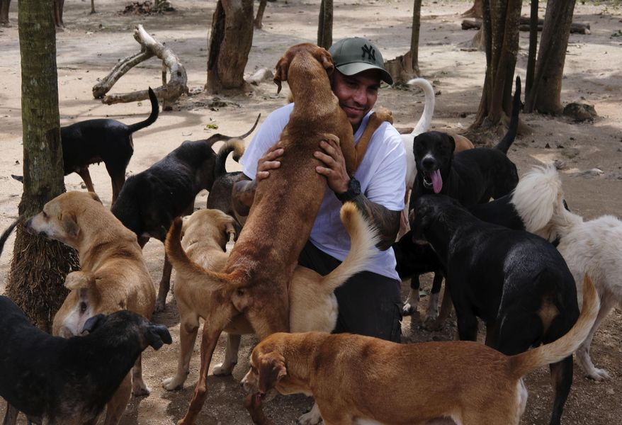 In this Oct. 13, 2020, photo, Ricardo Pimentel is greeted by dogs that he rescued at his Tierra de Animales (Land of Animals) shelter in Leona Vicario, Mexico. Pimentel sheltered about 300 dogs at his home during Hurricane Delta, and his story, which has gone viral, led people across the world to donate to the shelter. (AP Photo/Luis Andres Henao)