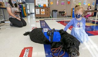 Pennick Patterson, right, pets Cojack, a new therapy dog at Western Elementary School in Barry, Ill., during a visit to Eileen Malone's pre-K classroom on Wednesday, Oct. 14, 2020. To the left is Eileen Malone who let students come up one at a time to visit Cojack. (Jake Shane/Quincy Herald-Whig via AP)