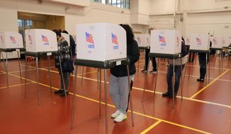 Maryland voters cast their ballots on Tuesday, Nov. 3, 2020 at the Pip Moyer Recreation Center in Annapolis, Md.  (AP Photo/Brian Witte)