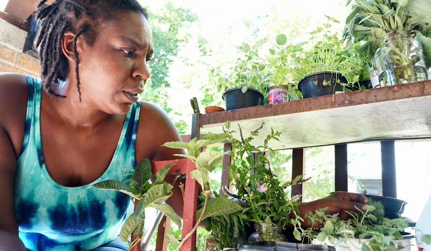 In this Aug. 7, 2020 photo, Camille Mays tends to her plants. Losing her son to gun violence has forced Mays to identify ways to cope. She now has over 100 houseplants that she tends to regularly at her home in Milwaukee. On days when she loses her purpose, the plants are always there, and they fuel her to press on. (Photo by Adam Carr/Milwaukee Neighborhood News Service via AP)