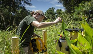 This photo provided by the University of Maryland shows Brooke Czwartacki taking a measurement in a well in Awendaw, South Carolina. Czwartacki regularly checks the salinity of well water as saltwater invades the state's aquifers. (Hunter Musi/Stanford University via AP)