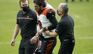 Cincinnati Bengals quarterback Brandon Allen (8) is assisted off the field after he was injured on a play during the second half of an NFL football game against the Miami Dolphins, Sunday, Dec. 6, 2020, in Miami Gardens, Fla. (AP Photo/Lynne Sladky)