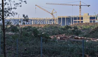 FILE - In this Tuesday, Dec. 8, 2020 file photo, felled trees lie on the construction site of the Tesla Gigafactory in Gruenheide near Berlin, Germany,  A German court has ruled that automaker Tesla Inc. has to stop clearing trees on the site where it's building its first electric car factory in Europe, the news agency dpa reported Thursday Dec. 10, 2020. (Patrick Pleul/dpa via AP, File)