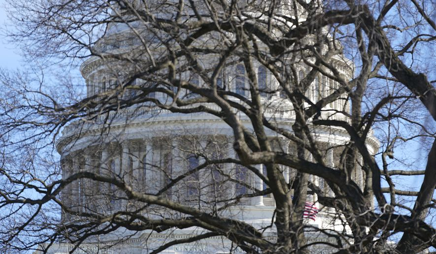 The U.S. Capitol dome stands above bare tree branches, Saturday, Jan. 9, 2021, in Washington. (AP Photo/Patrick Semansky)