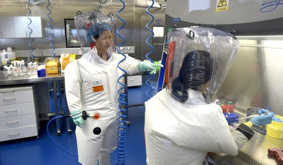 In this Feb. 23, 2017, file photo, Shi Zhengli works with other researchers in a lab at the Wuhan Institute of Virology in Wuhan in central China's Hubei province. A 10-member team of international researchers from the World Health Organization hopes to find clues as to the origin of the coronavirus pandemic in the central Chinese city of Wuhan where the virus was first detected in late 2019. (Chinatopix via AP, File)