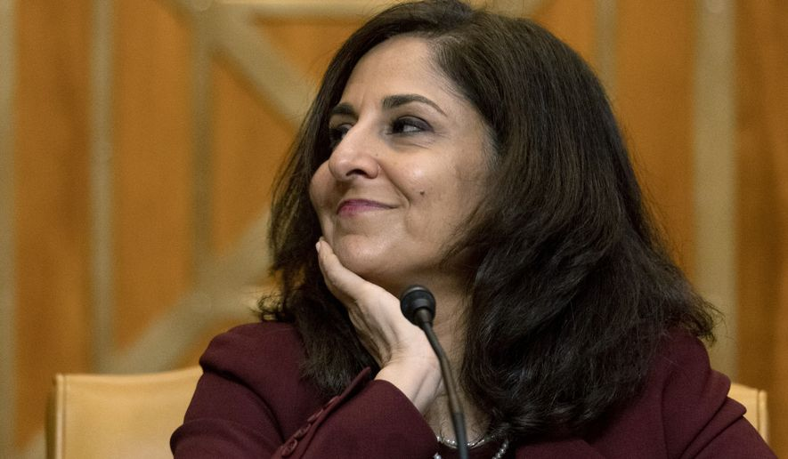 Neera Tanden, President Joe Biden's nominee for director of the Office of Management and Budget (OMB), appears before a Senate Committee on the Budget hearing on Capitol Hill in Washington, Wednesday, Feb. 10, 2021. (AP Photo/Andrew Harnik, Pool) ** FILE **