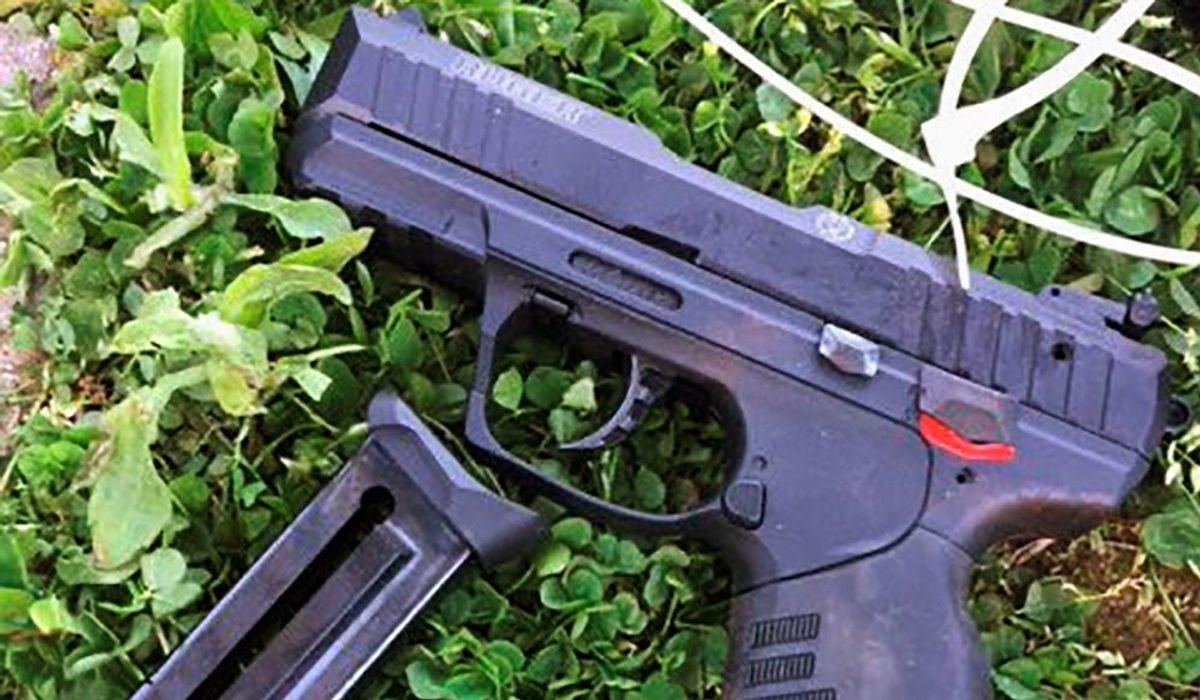 Dems' bill creating a publicly accessible gun registry called 'very dangerous'
