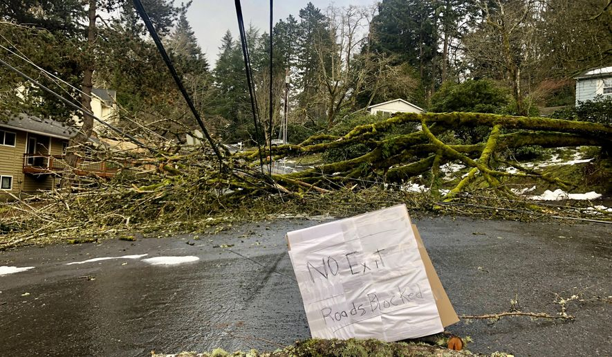 A large tree downed in a weekend ice storm sits atop power lines on Wednesday, Feb. 17, 2021 in Lake Oswego, Ore. Nearly 150,000 customers remained without power Wednesday in and around Portland, Oregon, nearly a week after a massive snow and ice storm swept into the Pacific Northwest, taking out hundreds of miles of power lines as ice-laden trees toppled. (AP Photo/Gillian Flaccus)