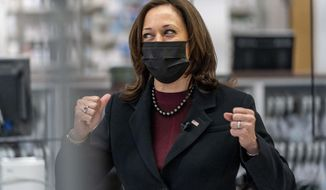 Vice President Kamala Harris speaks to a pharmacist before watching a COVID-19 vaccine administered at a Giant Foods grocery store, Thursday, Feb. 25, 2021, in Washington. (AP Photo/Andrew Harnik)