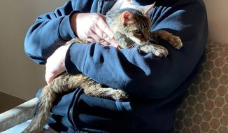 This photo provided by the Los Angeles County Department of Animal Care and Control shows Brandy, a brown tabby cat, that was reunited on Monday, Feb. 22, 2021, with her owner, Charles, (he would only give his first name) after she went astray for 15 years, are seen together at the Palmdale, Calif., animal care center. The Los Angeles man adopted her as a 2-month-old kitten in 2005. Charles says he cried and Brandy purred in his arms. The brown tabby was found Sunday in Palmdale, about a half-hour's drive from where he lives. (Los Angeles County Department of Animal Care and Control via AP)