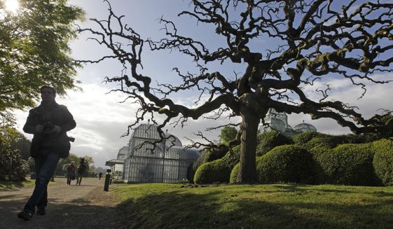 FILE - In this Friday, April 18, 2014 file photo, a photographer walks next to a Japanese Pagoda tree next to the Royal greenhouses on the grounds of the Royal Palace in Laeken, Belgium. In a pandemic time rife with restrictions, demands to respect social distancing have become quasi impossible to respect in public parks. One family in town though, has a lush garden all its own and ever more voices are being raised that the Royal Family of King Philippe should loosen up and open up at least part of their Park of Laeken to the public. (AP Photo/Yves Logghe, File)