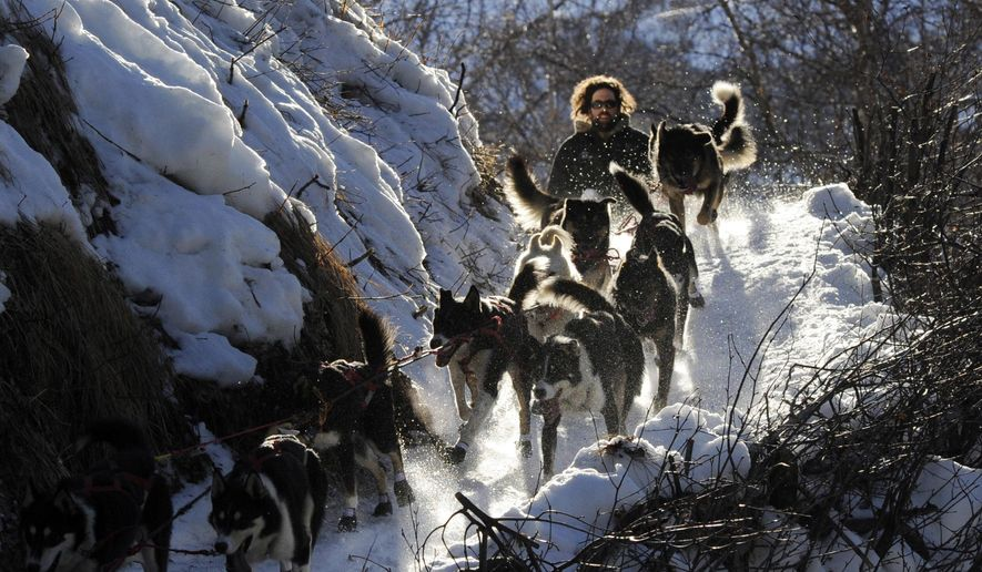 In this March 3, 2014, file photo, Rick Casillo comes over the last drop as he comes down the Happy River Steps heading to Puntilla Lake, Alaska, during the 2014 Iditarod Trail Sled Dog Race. The world's most famous sled dog race starts Sunday, March 7, 2021, without its defending champion in a contest that will be as much dominated by unknowns and changes because of the pandemic as mushers are by the Alaska terrain. (Bob Hallinen/Anchorage Daily News via AP, File) **FILE**