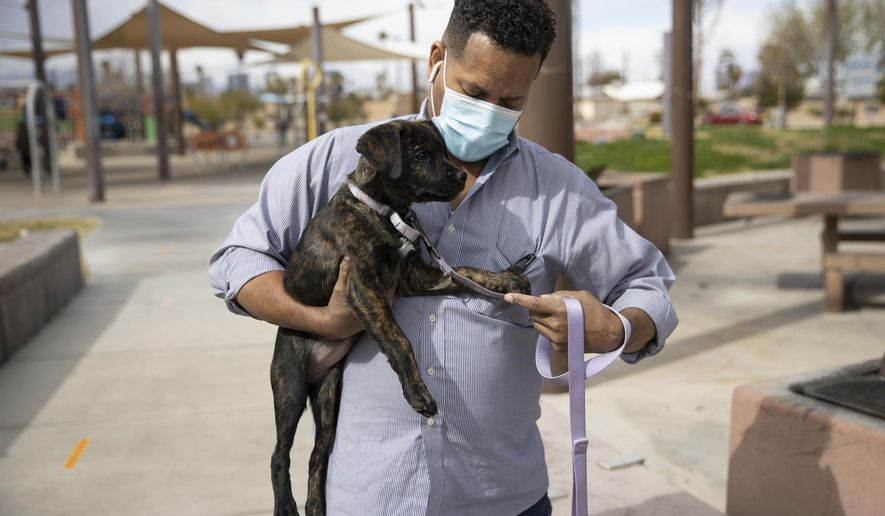 """Ronald Pipkins, who was the first presumptive positive case of COVID-19 in Nevada, walks his dog at Siegfried and Roy Park in Las Vegas, on Feb. 20, 2021. A year after he became """"Patient Zero"""" in Nevada's COVID-19 outbreak, Ronald Pipkins is still battling the lingering effects of the coronavirus. He gets up to do something but forgets why. """"My body's not ready yet,"""" the retired Marine told the Las Vegas Review-Journal. """"And that's kind of depressing because I'm a Marine."""" (Erik Verduzco/Las Vegas Review-Journal via AP)"""