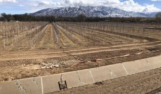 FILE - This Feb. 17, 2021 file photo shows an empty irrigation canal at a tree farm in Corrales, N.M., with the Sandia Mountains in the background, as much of the West is mired in drought, with New Mexico, Arizona, Nevada and Utah being among the hardest hit. The National Oceanic and Atmospheric Administration's official spring outlook Thursday, March 18, 2021, sees an expanding drought with a drier than normal April, May and June for a large swath of the country from Louisiana to Oregon. including some areas hardest hit by the most severe drought. And nearly all of the continental United States is looking at warmer than normal spring, except for tiny parts of the Pacific Northwest and southeast Alaska, which makes drought worse. (AP Photo/Susan Montoya Bryan)
