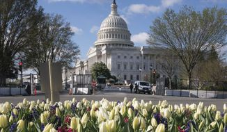 The entrance to the U.S. Capitol on Constitution Avenue in Washington, is seen at 9:22am, Friday, April 2, 2021, four hours before a Capitol Police officer was killed there when a man rammed a car into two officers at a barricade and then emerged wielding a knife, on Capitol Hill. (AP Photo/J. Scott Applewhite)