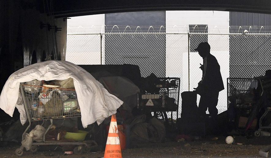 FILE - In this May 21, 2020, file photo, a man is seen at a homeless encampment that sits under Interstate 110 near Ramirez Street during the coronavirus outbreak in downtown Los Angeles. California launched a new database on Wednesday, April 7, 2021, that collects information on the homeless, including their race and ethnicity, gender, and age and which services they sought and received. (AP Photo/Mark J. Terrill, File)