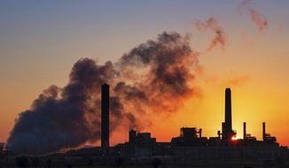 FILE - In this July 27, 2018, file photo, the Dave Johnson coal-fired power plant is silhouetted against the morning sun in Glenrock, Wyo.  More than 300 businesses and investors are calling on the Biden administration to set an ambitious climate change goal that would cut U.S. greenhouse gas emissions by at least 50% below 2005 levels by 2030.   (AP Photo/J. David Ake, File)
