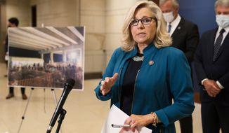 Rep. Liz Cheney, R-Wyo., speaks during a news conference on Capitol Hill, Wednesday, April 14, 2021, in Washington. (AP Photo/Manuel Balce Ceneta)