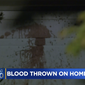 Animal blood is splattered all over a Santa Rosa home that once belonged to Barry Brodd, the former police officer who has served as a defense witness in the Derek Chauvin murder trial. Police say that suspected who perpetrated the crime on April 19 likely did not realize that Mr. Brood no longer lives at the residence. (Image: CBS, KPIX-5 video screenshot)