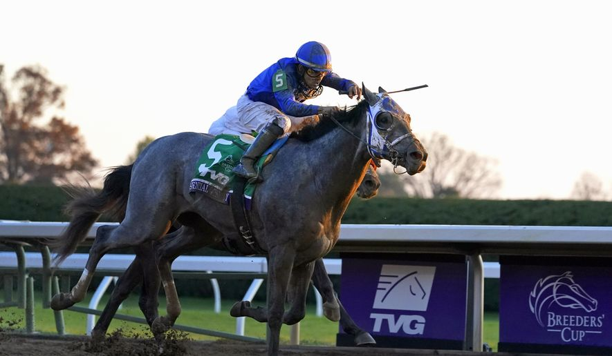 Jockey Luis Saez rides Essential Quality to win the Breeders' Cup Juvenile horse race at Keeneland Race Course in Lexington, Ky., in this Friday, Nov. 6, 2020, file photo. Essential Quality is expected to be the first gray horse favored to win the Kentucky Derby in 25 years. (AP Photo/Michael Conroy, File) **FILE**