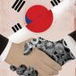 South Korea and Japan Cooperation Illustration by Linas Garsys/The Washington Times