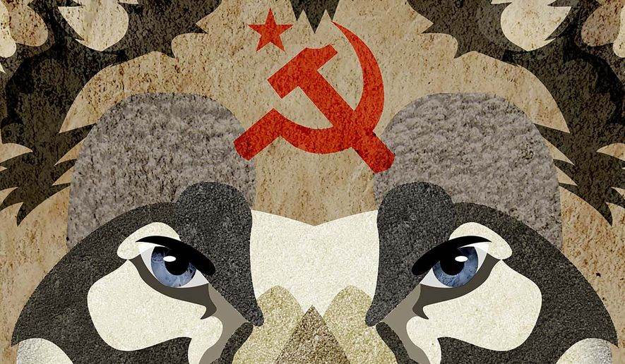 Socialist Wolf in the Church Illustration by Greg Groesch/The Washington Times