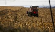 FILE - In this Dec. 4, 2017, file photo, a farmer harvests crops near Sinsinawa Mound in Wisconsin. A group of Midwestern farmers sued the federal government Thursday, April 29, 2021, alleging they can't participate in a COVID-19 loan forgiveness program because they're white. The group of plaintiffs includes farmers from Wisconsin, Minnesota, South Dakota and Ohio. According to the lawsuit, the Biden administration's COVID-19 stimulus plan provides $4 billion to forgive loans for socially disadvantaged farmers and ranchers who are Black, American Indian, Hispanic, Alaskan native, Asian American or Pacific Islander.  (Eileen Meslar/Telegraph Herald via AP, File)