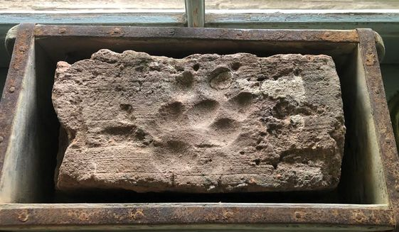 Hand-made 18th century clay brick with dog print pressed in it while it was drying under the southern Virginia sun. (Photo courtesy Molly Hurt)