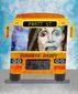 B3-TYRR-Nancy-Bus-G.jpg