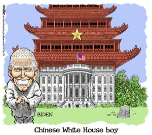 Chinese White House boy
