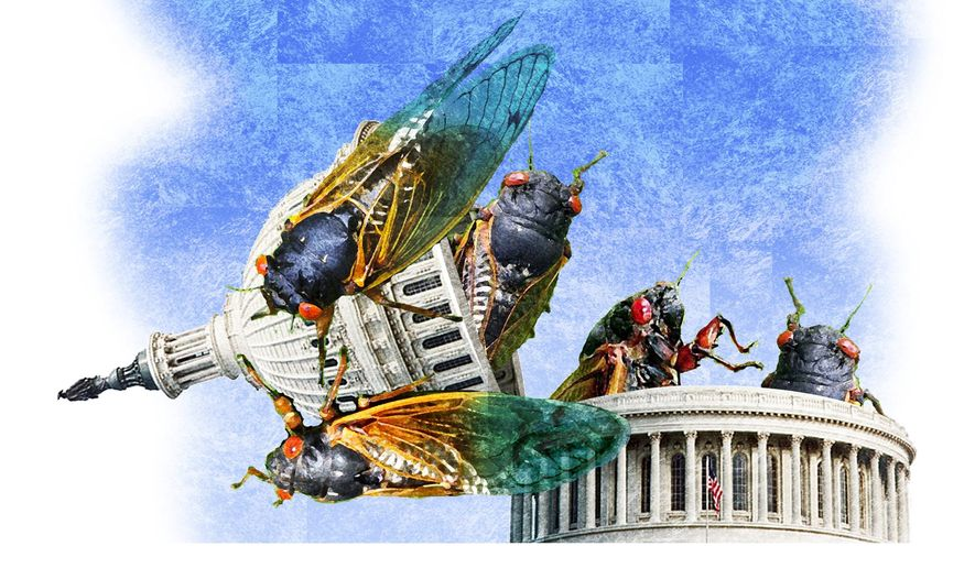 Illustration on the emergence of the Marxist left by Alexander Hunter/The Washington Times