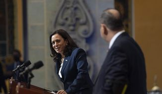 Vice President Kamala Harris, left, looks toward Guatemalan President Alejandro Giammattei, during a news conference, Monday, June 7, 2021, at the National Palace in Guatemala City. (AP Photo/Jacquelyn Martin)
