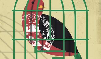 Pakistan's Afghanistan Policies Illustration by Linas Garsys/The Washington Times