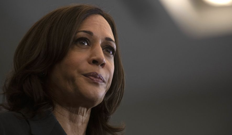 Vice President Kamala Harris speaks to supporters about the COVID-19 vaccine on Monday, July 12, 2021, in Detroit. (Nicole Hester/The Grand Rapids Press via AP)