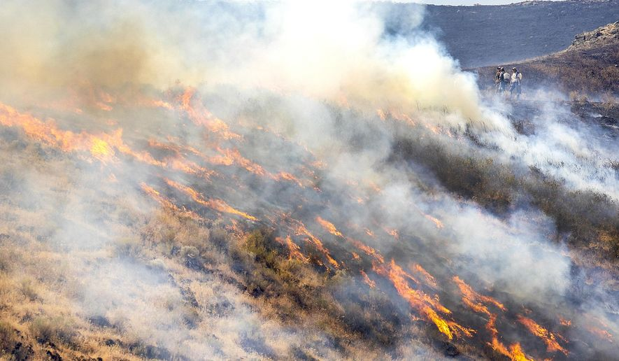 People stand behind the fire line as the flames spread through dry grasses at the Steptoe Canyon Fire  Thursday, July 22, 2021 in Colton, Wash. (August Frank/Lewiston Tribune via AP)