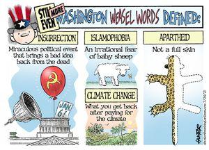 Still even more Washington Weasel Words defined