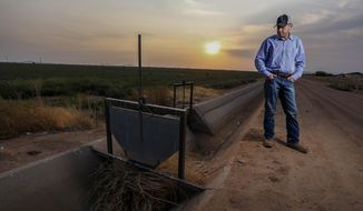 Will Thelander, a partner in his family's farming business, looks into a dry irrigation canal on his property, Thursday, July 22, 2021, in Casa Grande, Ariz. The Colorado River has been a go-to source of water for cities, tribes and farmers in the U.S. West for decades. But climate change, drought and increased demand are taking a toll. The U.S. Bureau of Reclamation is expected to declare the first-ever mandatory cuts from the river for 2022. (AP Photo/Darryl Webb)