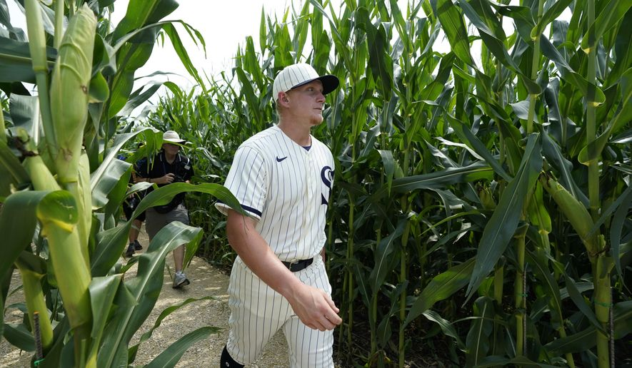 Chicago White Sox first baseman Andrew Vaughn walks through a cornfield before a baseball game against the New York Yankees, Thursday, Aug. 12, 2021, in Dyersville, Iowa. The Yankees and White Sox are playing at a temporary stadium in the middle of a cornfield at the Field of Dreams movie site, the first Major League Baseball game held in Iowa. (AP Photo/Charlie Neibergall)