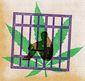 B3-FRED-Drug-Jail-G.jpg