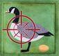 B4-RAHN-Goose-Targe.jpg