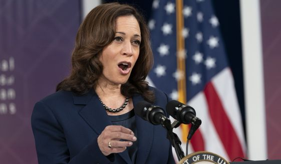 Vice President Kamala Harris speaks to the National Congress of American Indians' 78th Annual Convention, Tuesday, Oct. 12, 2021, from the South Court Auditorium on the White House complex in Washington. (AP Photo/Jacquelyn Martin) **FILE**