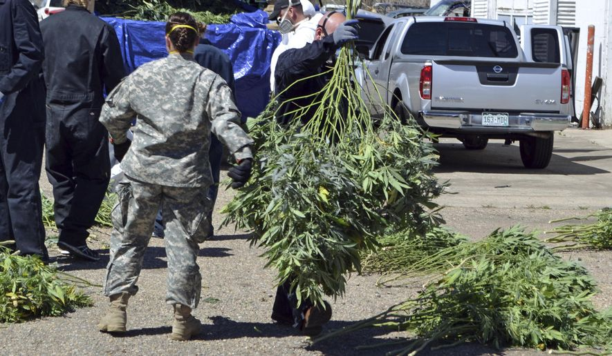 In this April 14, 2016, file photo, investigators load marijuana plants onto a Colorado National Guard truck outside a suspected illegal grow operation in north Denver. A county in southern Oregon says it is so overwhelmed by an increase in the number and size of illegal marijuana farms that it declared a state of emergency Wednesday, Oct. 13, 2021, appealing to the governor and the Legislature's leaders for help. (AP Photo/P. Solomon Banda, File)