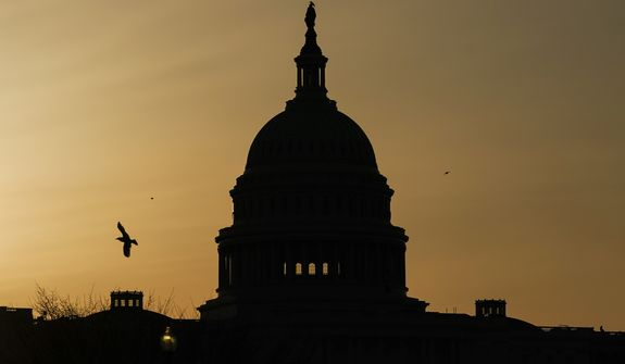 In this March 4, 2021, file photo, a bird flies near the U.S. Capitol dome at sunrise in Washington. The Republican fundraising committee dedicated to flipping the House in the 2022 midterm elections says it raised more than $105 million this year through September 2021. The record haul marks a 74% increase over the last cycle and includes $25.8 million raised in the third quarter of the year. (AP Photo/Carolyn Kaster, File)