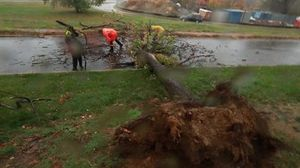 Superstorm Sandy: Police clear tree in Arlington VA
